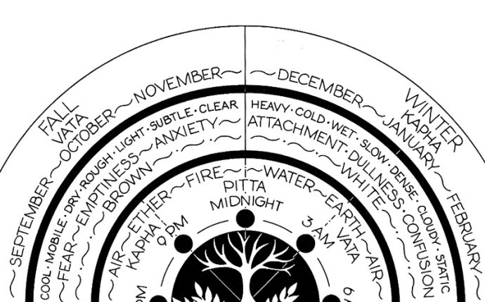 Ayurveda Basics Workshop- The Science of Life — PRASAD