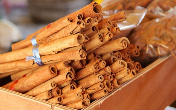 Cinnamon(Dalchini) medicinal uses – bimbima