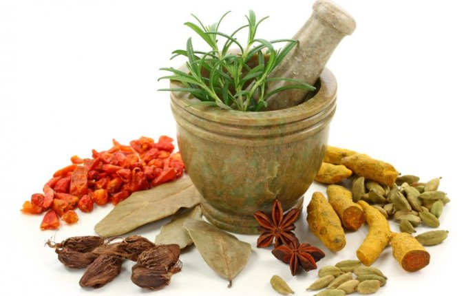 EduCon - Ayurvedic Tourism in India
