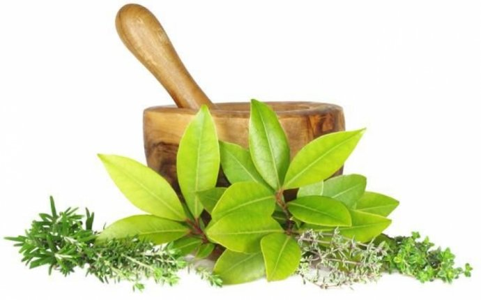 Reduced special prices for all Ayurvedic treatments at Ayurnilayam