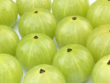 amla health benefits, amla medicinal uses, medicinal properties of amla, amla for hair, amla for skin, amla increase sperm count, ayurveda amla, Emblica officinalis