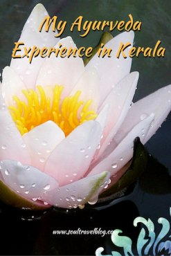 my ayurveda experience in kerala - soul travel blog